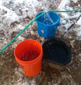 Spewing water hose filled those buckets in record time.