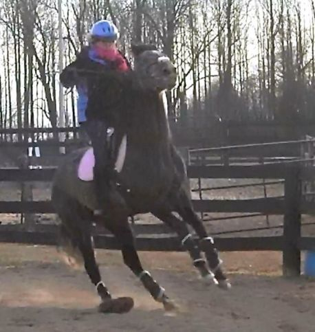 The first time I feared this horse. My reins broke and I lost my stirrups. I came off.