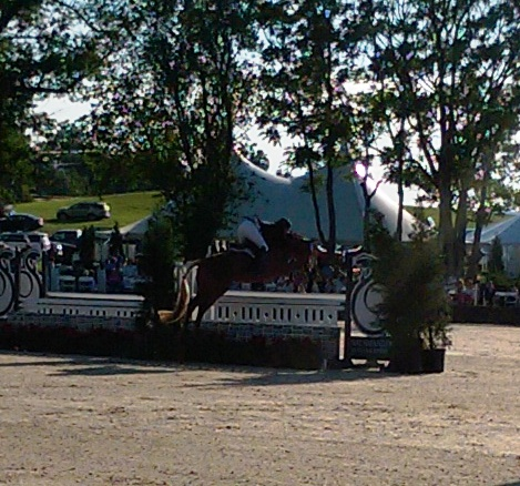 upperville hunter derby