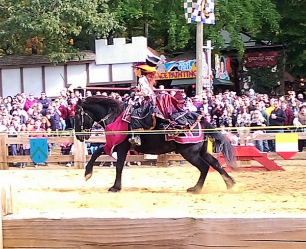 There was a lady jouster, but she did not actually participate in the joust, just the skill games part. I was disappointed.