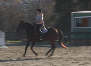 I can canter, wheeeee!